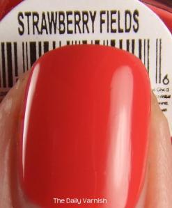 bondi New York Strawberry Fields MACRO 2